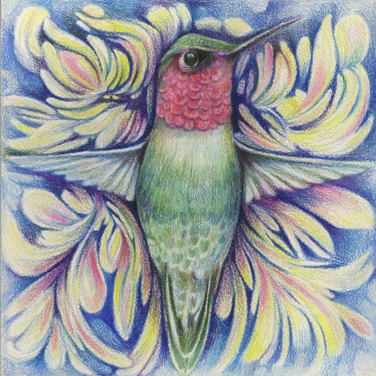 'Hummingbird'Gentian OsmanPrismacolor pencils on aquaboard(2013)